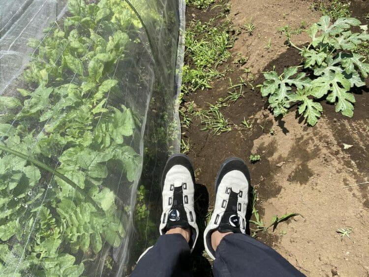 [#4] 靴と5月25日の出来事。(担当・関谷編)