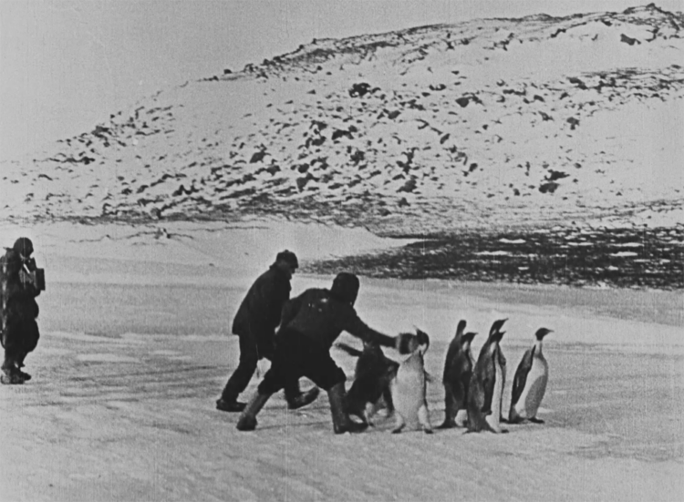 【#3】私の南極探検(担当・大傍正規)